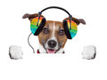 Music dog listening to from an old cassette of the s Stock Image