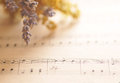 Music notes with flowers opened book and Royalty Free Stock Image