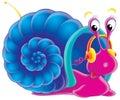 Musical snail Stock Image