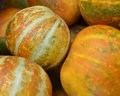 Muskmelon in the market thailand Stock Photos