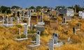 Muslim cemetery in samarcande uzbekistan asia Stock Images