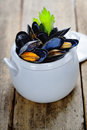 Mussels cooked with white wine sauce in a white pot Stock Photography