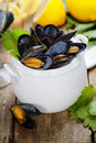 Mussels cooked with white wine sauce in a white pot Stock Images