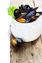 Mussels cooked with white wine sauce in a white pot Royalty Free Stock Photos