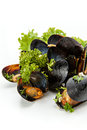 Mussels fresh with herbs and garlic on a white background Royalty Free Stock Image