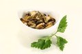 Mussels with italian parsley Royalty Free Stock Images