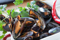 Mussels saute closeup of bowl with decorated with fresh parsley and red chili pepper Stock Images