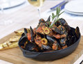 Mussels saute ragout in a frying pan Stock Images