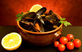 Mussels Soup Royalty Free Stock Images