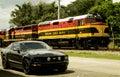 Mustang in panama