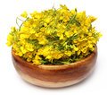 Mustard flower closeup of on wooden bowl Stock Image