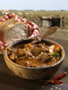 Mutton stew Royalty Free Stock Photography