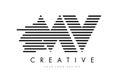 MV M V Zebra Letter Logo Design with Black and White Stripes Royalty Free Stock Photo