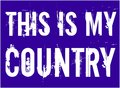 This Is My Country. USA american slogan vector