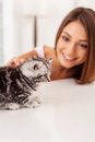 My little cutie cute kitten sitting on the table while being stroked by beautiful young woman Stock Photography