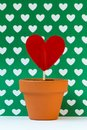 My love for you is growing, green Royalty Free Stock Photo