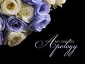 My sincere apology graceful card design with image of white and purple roses on top left over black background Royalty Free Stock Photography