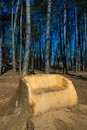 My space in nature: big wooden bench out of old st Royalty Free Stock Photo