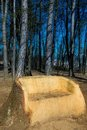 My space in nature: big wooden bench from a tree t Royalty Free Stock Photo