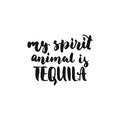 My spirit animal is Tequila. Cinco de Mayo hand drawn lettering phrase isolated on the white background. Fun brush ink inscription