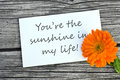 My sunshine white card with lettering you are and orange marigold Royalty Free Stock Photo