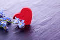 Myosotis flower with red wooden heart decoration blue Royalty Free Stock Image