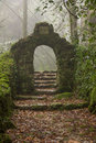 Mysterious entrance on foggy forest Royalty Free Stock Photo