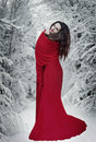 Mysterious fantasy woman in red dress in forest at snow. Book cover Royalty Free Stock Photo