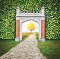 Mysterious gate entrance in dreams. New life or beginning conce Royalty Free Stock Photo