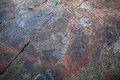 Mysterious petroglyphs of Onega. Besov Nos Stock Photography