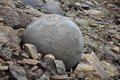 Mysterious round stones from arctic boulders of champ island franz jozef land Stock Images