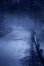 Mysterious woman ghost in white dress the misty forest road vintage noise filter Stock Image