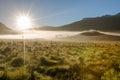 Mystic morning fog Royalty Free Stock Photo
