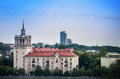 Mystical birds flight over the old buildings of vilnius lithuania Royalty Free Stock Photos
