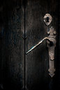Mystical old door Royalty Free Stock Photo