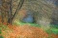Mystical path park in prague czech republic Royalty Free Stock Image
