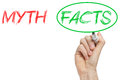 Myth and facts myths opposition written on whiteboard Royalty Free Stock Image