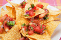Nachos corn chips with homemade salsa Stock Images