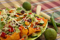 Nachos heap of with vegetables on green plate Royalty Free Stock Images