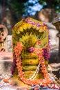 Naga deity a hindu decorated with flowers and kumkum Royalty Free Stock Photo