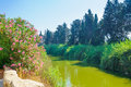 Nahal alexander nature reserve view of stream israel Royalty Free Stock Images