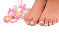 Nail care for women's feet Royalty Free Stock Photo