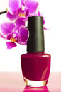 Nail polish burgundy with orchid on a white background Royalty Free Stock Images