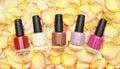 Nail polish in rose petals Royalty Free Stock Photo