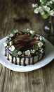 Naked drip cake with chocolate, decorated with strawberries, jasmine flowers and honeysuckle on brown wooden table Royalty Free Stock Photo