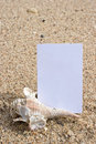 Name card and seashell on the beach Royalty Free Stock Photography