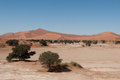 Namib desert in namibia sossusvlei Royalty Free Stock Photo