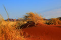 Namibia - Typical Landscape Royalty Free Stock Photo