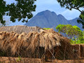 Nampula mozambique december the settlement national african house with a thatched roof in unknown Stock Images
