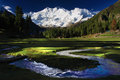 Nanga parbat and fairy meadows named by german climbers german märchenwiese ″fairy tale meadows″ locally known as joot is a Royalty Free Stock Image